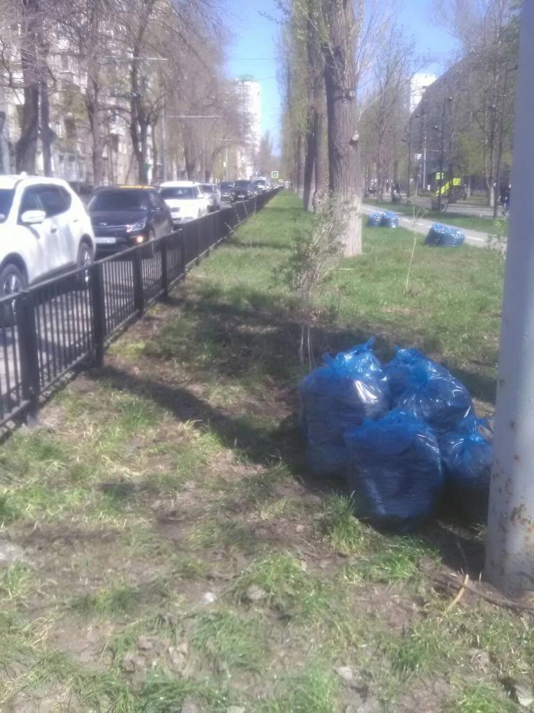 В скверах и парках  Фрунзенского района продолжается уборка территории
