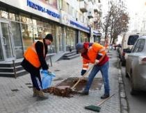 Во Фрунзенском районе начал действовать пилотный проект по обслуживанию зеленых зон и тротуаров