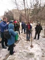 Прошел обучающий семинар по уходу за городскими насаждениями и обрезке деревьев