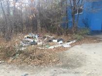 Сотрудниками управления муниципального контроля городской администрации выявлено нарушение за организацию несанкционированной свалки