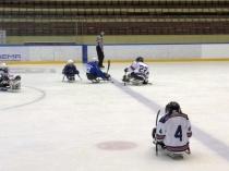 В Саратове состоится Межрегиональный Форум, посвященный развитию адаптивного хоккея