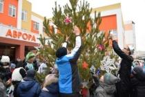 В  школе «Аврора» установили праздничную елку